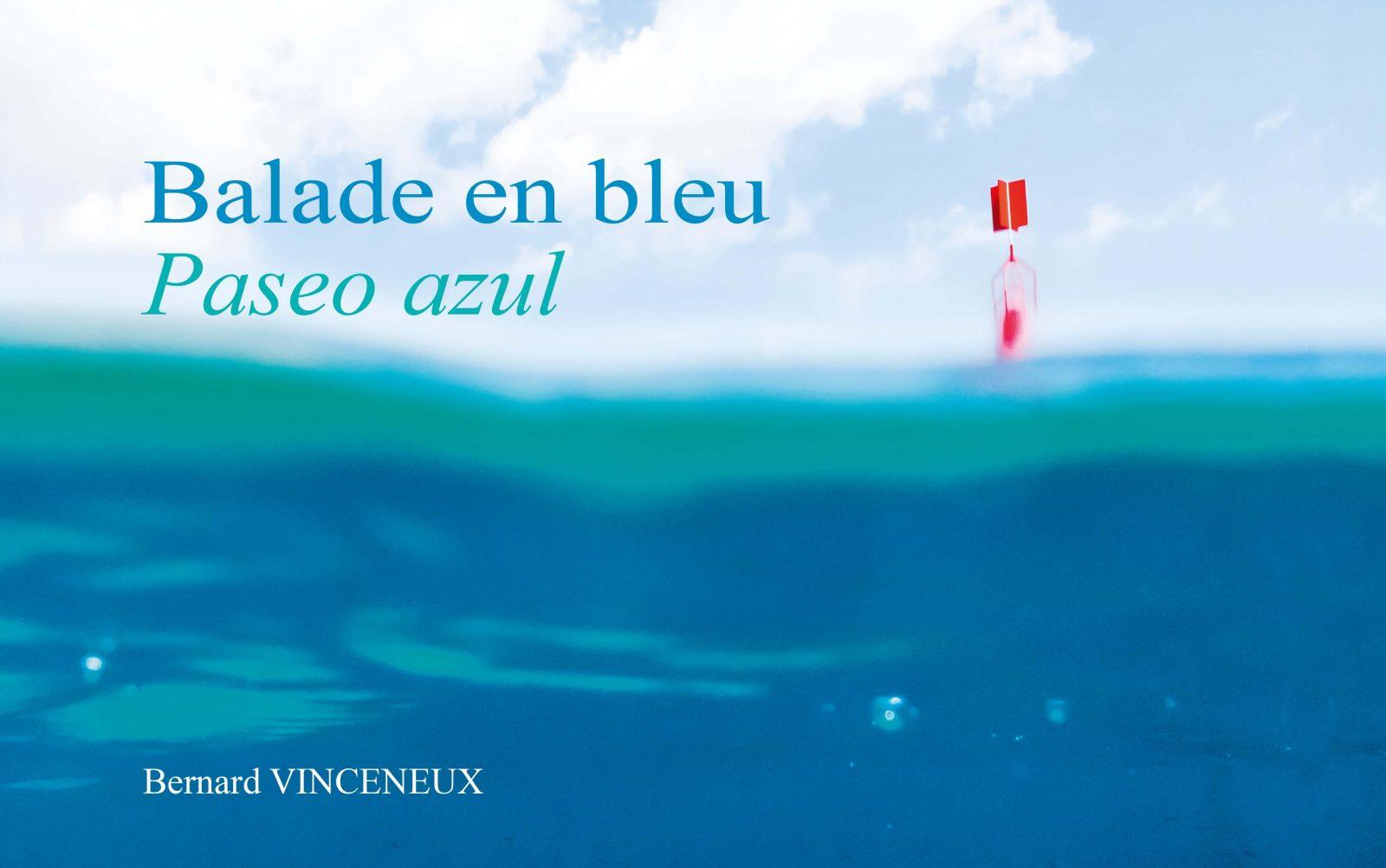 """Couverture livre """"Balade en bleu"""""""
